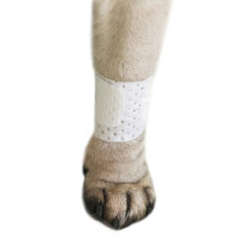 PawFlex | Basic Dog Bandage