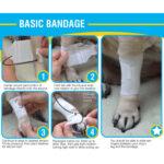 Basic pet Bandage instructions, pawflex, pet care, animal health, dog bandages, pet supply near me