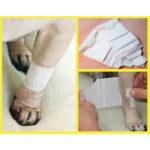 Basic Bandage for pets, dog bandages, pawflex, pet shop hear me