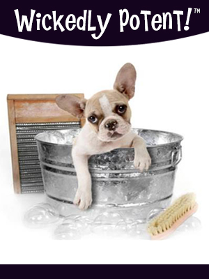 PawFlex | Wickedly Potent, Natural Remedies Dog Shampoo, Dog Showering