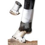 Equine BandaFlex, Disposable Horse Bandage, pawflex, horse supply near me, animal care