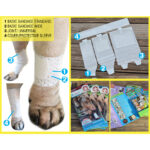 First Response Bandage, LEG Kits, pet bandages, dog bandages, pawflex, pet shop near me, how to use dog bandages