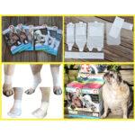 First Response Bandage, LEG Kits, pet bandages, dog bandages, pawflex, pet shop near me, dog bandage set, pet care, pet store
