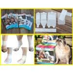 First Response Paw Bandage for pet, dog bandages, pet bandage, pawflex, pet care, animal care, pet shop near me, dog care, animal health