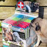 First Response Paw Bandage for pet, dog bandages, pet bandage, pawflex, pet care, pet shop near me
