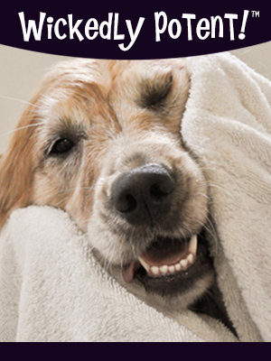 PawFlex | Wickedly Potent, Natural Remedies Dry Dog Shampoo