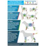 Universal Joint Bandages, for pets, dog bandages, pawflex, pet store near me, pet shop, dog size charts