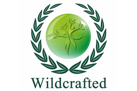 Wildcrafted Logo