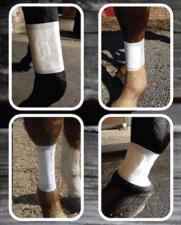 Equine BandaFlex Horse Leg