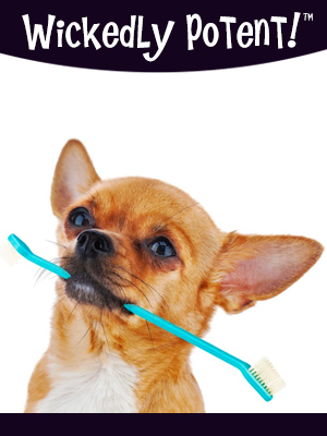PawFlex | Wickedly Potent, Natural Remedies, Vegan Fresh Dog Toothpaste