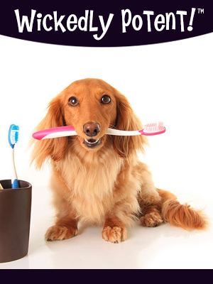 PawFlex | Wickedly Potent, Natural Remedies, The Original Vegan Dog Toothpaste
