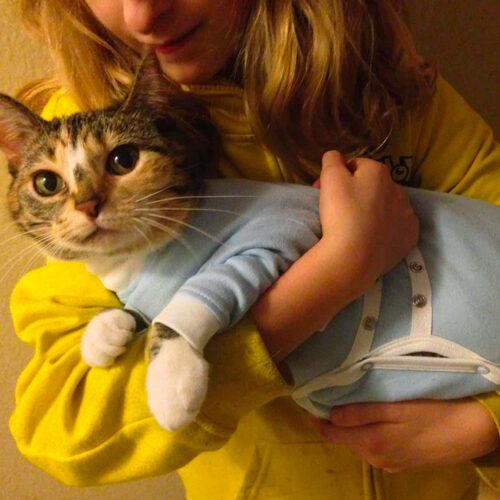 Cat Hug Onesies