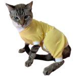 Cat Medical Onesies, pawflex, onesies for animal, pet supply near me, dog bandages, pet shop near me