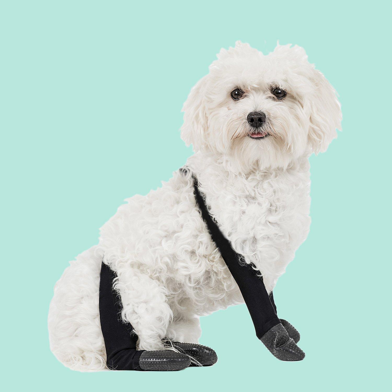 PawFlex Snug Fit Outdoor Leggings (1)